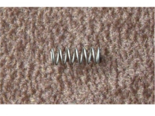 springs for cable locks